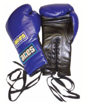 Pro Series Training Gloves - 14oz - Laces