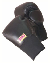 Pro Series Training Gloves Elastic - 14oz and 16oz
