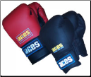 Aerobic/Cardio Kickboxing Gloves - 12oz